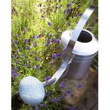 0.367-Gallon Aguo Watering Can