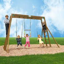 Classic Swing Set with Top Ladder and Chained Accessories