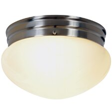 Contemporary 2 Light Flush Mount