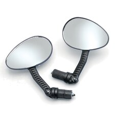 Mirror (Set of 2)