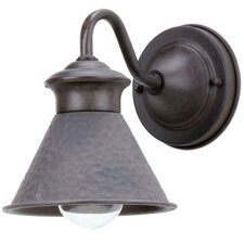 Dark Sky Essen 1 Light Outdoor Wall Sconce