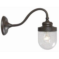 Dark Sky 1 Light Large Outdoor Wall Sconce