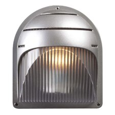 Delphi 1 Light Outdoor Wall Sconce