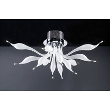 Dove 12 Light Semi Flush Mount