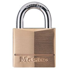 Security Padlock with 2 Keys