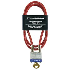 Laminated Padlock and Cable