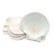 Nantucket Seafood Natural Baking Shell (Set of 4)
