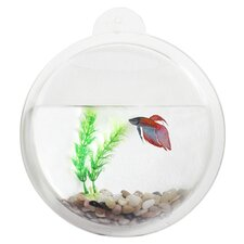 <strong>Danya B</strong> Mount Fishbowl Wall Décor