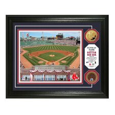 MLB Coin Photo Mint Framed Memorabilia