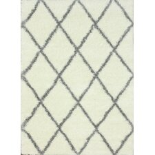 Shag Grey & White Shag Area Rug