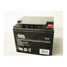 12 Volt 44 Amp Sealed Lead Acid Wheelchair Battery (Set of 2)