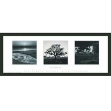 'Trilogy' by Ansel Adams Framed Photographic Print