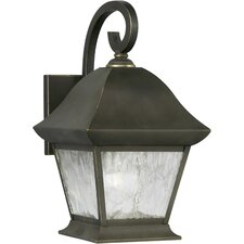 <strong>Forte Lighting</strong> 1 Light Outdoor Wall Lantern with Clear Shade