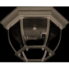 Classico 2 Light Outdoor Hexagonal Flush Mount