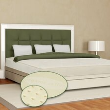 "Eclipse 6"" Latex Mattress Set"