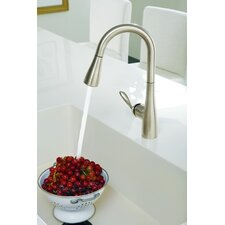 <strong>Moen</strong> Arbor One Handle High Arc Bar Faucet