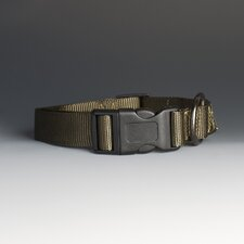 The Bootlegger Dog Collar in Green