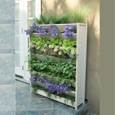 Living Vertical Garden Wall