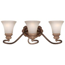 Abbott Place 3 Light Bath Vanity Light