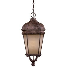 Harrison 1 Light Chain Hung Indoor/Outdoor Lantern