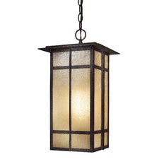 Delancy 1 Light Chain Hung Indoor/Outdoor Lantern