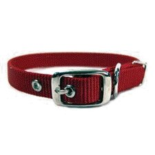 Single Thick Nylon Dog Collar in Red