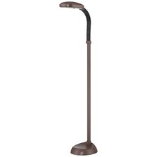 Comfy Eyes Florescent Floor Lamp