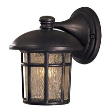 Cranston Small Outdoor Wall Lantern