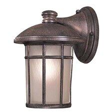Cranston Medium Outdoor Wall Lantern