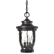 Merrimack 3 Light Hanging Lantern