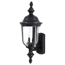 Morgan Park Outdoor Wall Lantern