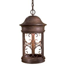 Sage Ridge 1 Light Outdoor Chain Hanging Lantern