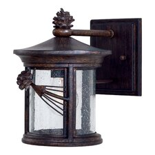 Abbey Lane 1 Light Outdoor Wall Lantern