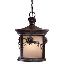 Abbey Lane 1 Light Indoor/Outdoor Chain Hanging Lantern