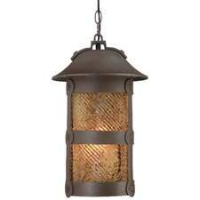 Lander Heights 1 Light Indoor/Outdoor Chain Hanging Lantern