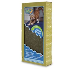 Catnip Coated Cat Scratcher