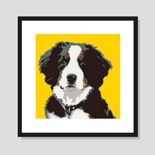 Bernese Mountain Dog Graphic Art