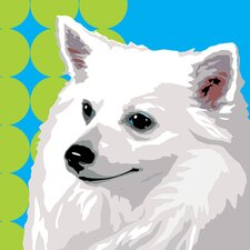 Pooch Décor Spunky Spitz Portrait Graphic Art on Canvas