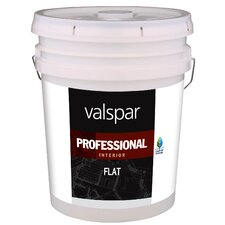 5 Gallon Neutral Base Flat Interior Professional Series Paint