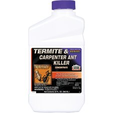 Termite & Carpenter Ant Control