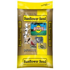 Sunflower Seed Wild Bird Food