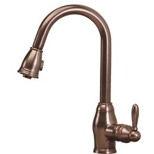 Newbury One Handle Single Hole Pull Out Spray Kitchen Faucet
