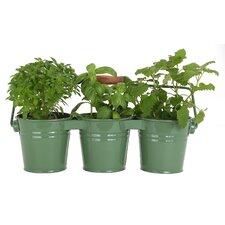 3 Pail Planter