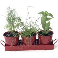 Planters (Set of 12)