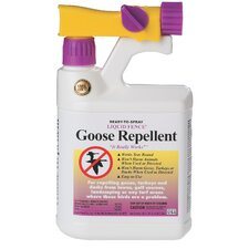 Goose Repellent Conc with Nozzle