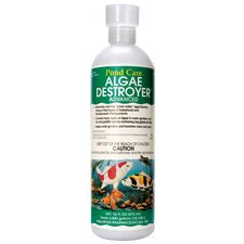 16 oz Algae Destroyer
