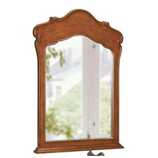 "Large Single 38"" x 28"" Vanity Mirror in Dark Cherry"