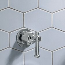 Portsmouth Diverter Shower Faucet Trim Kit with Lever Handle