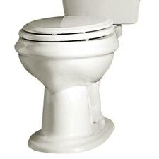 Standard Elongated Toilet Bowl and Seat