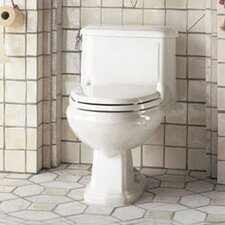 Antiquity 1.6 GPF Elongated 1 Piece Toilet